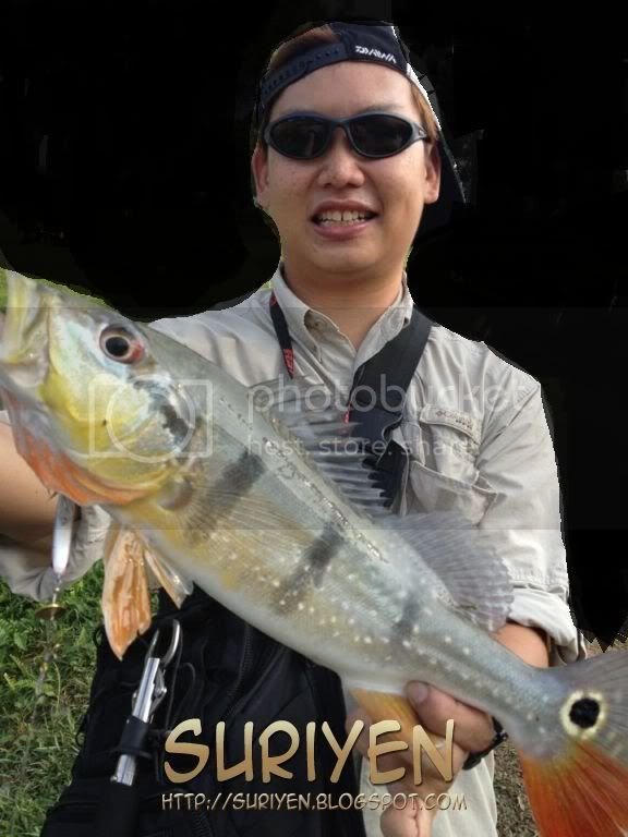 http://i866.photobucket.com/albums/ab221/suriyen/Fishing/558617_10150612196446529_524286528_9497525_1973768823_n-1.jpg